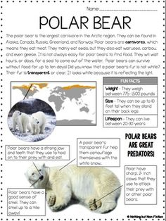 Main Idea Reading Passages: Arctic Animals by Nothing but Non-Fiction Reading Comprehension Worksheets, Reading Passages, Reading Strategies, Reading Activities, Close Reading, Guided Reading, Teaching Reading, Third Grade Reading, Second Grade