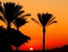 Image result for egyptian landscape in silhouette