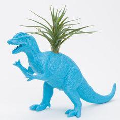 Dinosaur Planter with Air Plant