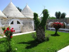 Trulli and Roses in Puglia - Italy