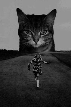Giant cat retro woman running.
