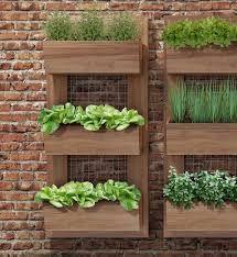 Resultado de imagem para painel jardim vertical