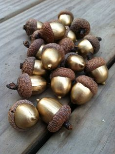 Our whole acorns add beauty and a sense of wonder to any indoor fall or winter themed display. They are hand gathered under several very large oak trees in our area. They are cleaned and oven dried for several hours to ensure they are pest free. These acorns are painted gold and make a lovely statement when used as a filler in a clear glass vase on a tabletop or simply scattered around other tabletop decorations. Acorns naturally fall out of the caps when ripe, so after they are oven dried…