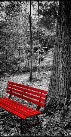 Red bench...
