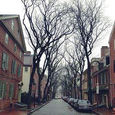 soggy society hill / tempspaz