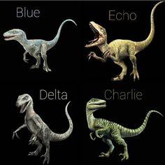 jurassic park world Jurassic Park Raptor, Jurassic World Raptors, Blue Jurassic World, Jurassic World Dinosaurs, Jurassic World Fallen Kingdom, Velociraptor Jurassic Park, Raptor Dinosaur, Dinosaur Art, Jurrasic Park Costume