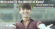 enjoy the Kpop world :)