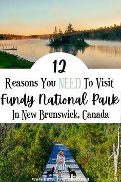 Canada Canada, Parks Canada, Acadia National Park, National Parks, East Coast Canada, Hopewell Rocks, New Brunswick Canada, Waterfall Hikes, Canadian Travel