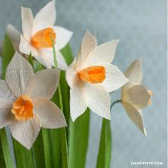 Make Your Own Crepe Paper Daffodils