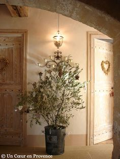 Yule style!! Noel Christmas! Winter Solstice! An olive tree decorated for Christmas! A Heart in Provence
