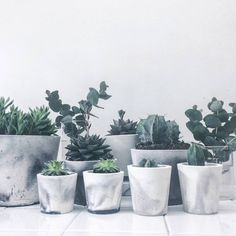 I've just found White/Black Or White/Grey Marbled Cement Mini Pot. Handmade and unique pots in white porcelain cement with marble pattern in either grey or black cement.