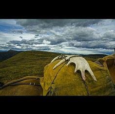 Northern British Columbia   Photo of the day  #saychiiz #photooftheday #chiiz #chiizdotcom #photographer #canon #nikon #nikonusa #sony #click #lightroom #snapseed #adobelightroom #composition #naturephotography #insects #natgeo #travel #travelwithchiiz #sky #chiizphotooftheday #bestoftheday #repost  Photo Credit : Michael Christopher Brown