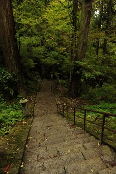 ˚A path to the upper area of Yamadera (山寺) Japan
