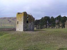 Dryhope Tower - geograph.org.uk - 925481.jpg