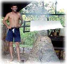 Couro Vegetal dos Seringueiros da Amazônia