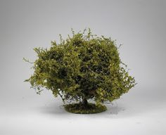 "This is a tutorial on ""How to make Trees"" I equate adding trees to a gaming table like adding candles on a birthday cake,it just doesn'. Wargaming Table, Wargaming Terrain, How To Make Trees, Crop Field, How To Dry Basil, Modeling, Herbs, Medieval, Plants"