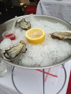 Oysters - Nice,France