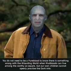 Voldemort Rick Perry