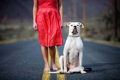 Interview with a totally incredible dog photographer, Erin Vey.