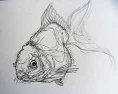 ink drawing Here are some quick studies of fish for this week, I thought the continuous-line drawing would be a little more challenging on fish as there aren't so many . Fish Drawings, Animal Drawings, Art Drawings, Drawing Faces, Contour Drawings, Contour Line Drawing, Drawing Art, Drawing Tattoos, Sweet Drawings