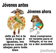 Funny School Memes, School Humor, Funny Memes, Animal Crossing Funny, Dont Hug Me, Spanish Memes, Pinterest Memes, We Bare Bears, Doge