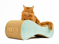 catscratcher Le Ver - eco-friendly, handmade and loved by cats!