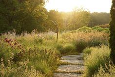 flagstone path through high summer perennials and grasses in Girard, Illinois, by Adam Woodruff + Associates, Clayton, MO