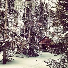 Snowed in. Yellowstone National Park #REVISITProducts #winteroutwest