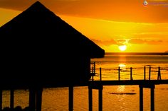 Polinésia Francesa: Dicas para visitar Tahiti e Morea - Viajoteca