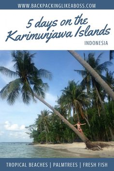 """The amazing Karimunjawa Islands near Java, Indonesia. Visit them if you can, it's great! The Karimunjawa islands just above Java are absolutely stunning. """"Leave nothing but footsteps - Take nothing but memories"""". A true paradise! Best Beaches To Visit, Cool Places To Visit, Tokyo Japan Travel, Gili Island, Backpacking Asia, Tropical Beaches, China Travel, Bhutan, Mongolia"""