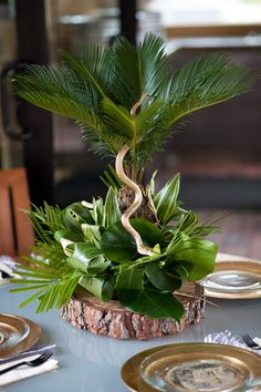 1000 Ideas About Safari Centerpieces On Pinterest