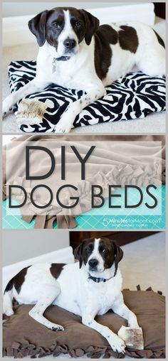 Two DIY dog bed tutorials - With step by step photos and video tutorial.  Super easy to make - no sewing necessary. Perfect for craft for kids or an easy, fun family project.