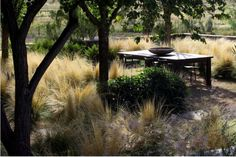 We love this serene outdoor dining area. We are in the process of creating something similar at Inn Paradiso