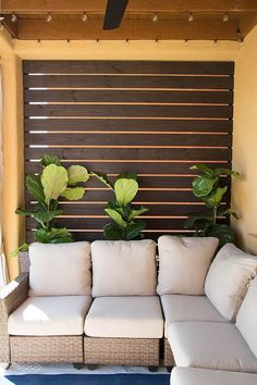 Gorgeous Slatted Outdoor Privacy Screen #backyardlandscapediyprivacyscreens