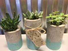 Concrete Succulent Planters. Urba planters set of 3. by UCdesign
