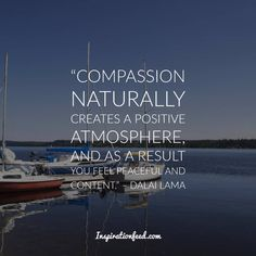 Learn the wisdom and message of compassion of the Dalai Lama. Here are the best Dalai Lama quotes compiled for you. Compassion Quotes, 14th Dalai Lama, Buddhist Philosophy, Nobel Peace Prize, Spiritual Teachers, Self Esteem, Helping Others, Success Quotes, Self Help