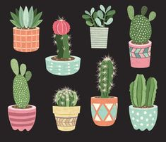 You will receive :You will receive 9 beautifully rendered separate PNG files (transparent background) which were created at Each clipart element is saved separately about Cactus Pot, Cactus Flower, Cactus Plants, Flower Pots, Cactus Terrarium, Indoor Cactus, Indoor Plants, Potted Plants, Cactus Drawing