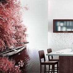 Cheap Wallpaper, Wall Murals, Places, Wall Papers, Nature, Environment, Interiors, Houses