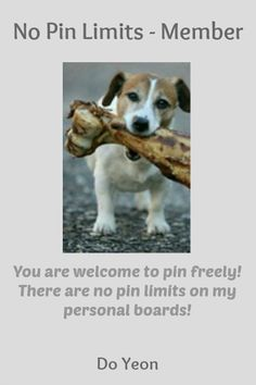 No Pin Limits - Member: Do Yeon - Visit profile here: http://www.pinterest.com/eowed