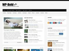 WP-Bold - has a responsive design and multiple sliders