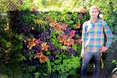 These sunshiny ideas will turn your itty-bitty outdoor space into an awesome retreat.: Create a Colorful Vertical Garden