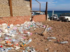 Tour operators throw the lunch boxes and bottles away, rather than take them home.  At Blue Hole Dahab