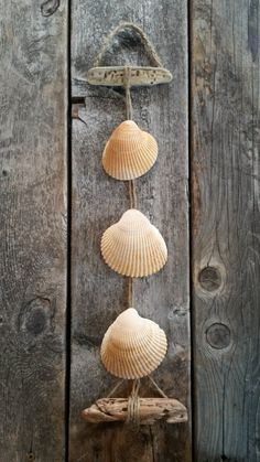 Seashell Hanging Decor Driftwood Natural white by BeachBungalowInc, $24.00 Nautical Beach House Decor, Beach Wedding Decor, Beach Wedding Favors