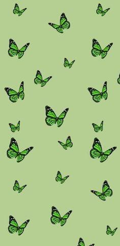 Green buttlerflies wallpaper