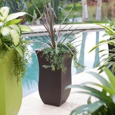 Belham Living Valencia 16 x 16 in. Tall Planter - Planters at Hayneedle Tall Planters, Patio Planters, Landscaping With Rocks, Pool Landscaping, Backyard Pools, Turf Builder, Pool Landscape Design, Concrete Pool, Entrance Ways