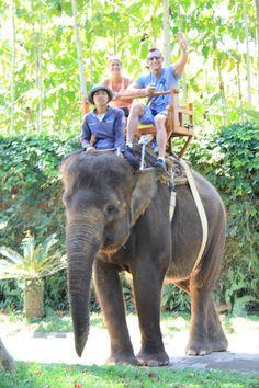 Elephant Ride at Bali Zoo. www.kebalitour.com