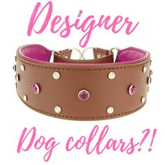 You better believe it! These fancy collars are for pampered pooches ONLY! Luxurious italian leather, swarvoski crystals, stately gold chains, and pretty crystals await! Check these awesome collars out at Kim's pet's.