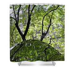 """East West Gate 3 Shower Curtain for sale by Sarah Loft at http://fineartamerica.com/products/east-west-gate-3-sarah-loft-shower-curtain.html .  This shower curtain is made from 100% polyester fabric and includes 12 holes at the top of the curtain for simple hanging.  The total dimensions of the shower curtain are 71"""" wide x 74"""" tall. $65"""