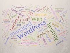 10 Best Wordpress Hosting Service Providers  Being a WordPress user you must know so well what the fastest easiest and also most favored way to power a professional website with just a little or even no knowledge of coding or web design is. In case you dont well here it is: WordPress Hosting Service! If you already possess some HTML skills it will be easier for you to customize your site but again being clueless is alright because these hosting service providers will help entirely. Basing on…