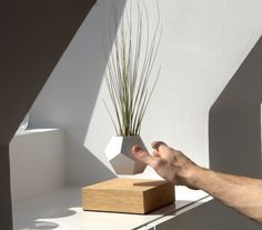 For over a year, Swedish scientist Simon Morris has been experimenting with levitating plants, growing common flora while suspended in the air. This system, called LYFE, consists of a planter that hovers just over an oak base powered by strong magnetism. Through this invisible force field house